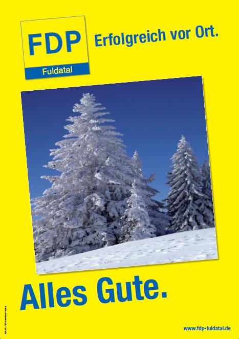 Silvesterbild in Die FDP in Fuldatal wünscht Ihnen alles Gute für 2011!